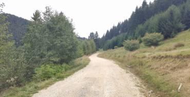 Nou drum forestier de 6 km la Săcele, între Timișul de Jos și Cascada Tamina