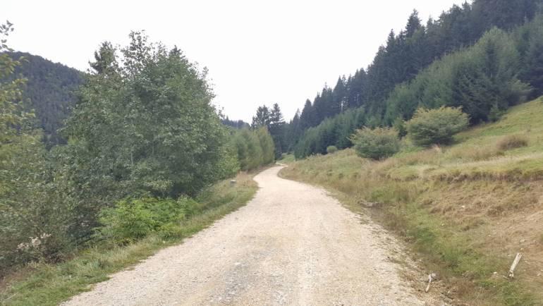 Drepturile și beneficiile pe care le au proprietarii de păduri provenite din vegetația forestieră de pe terenuri din afara fondului forestier național