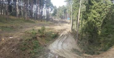 Drumul forestier Poiana Angelescu – Valea Largă o investiție pentru toți săcelenii
