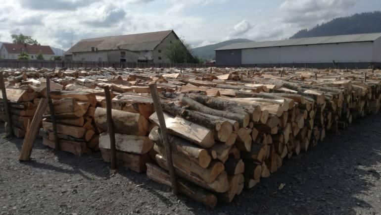 Depozitul de lemne s-a deschis în data de 14 mai