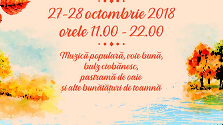 Festivalul Piatra Netedă, 27-28 octombrie 2018