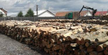 Lemnul de foc către populație va fi livrat începând cu data de 5 august