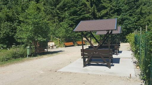 INFORMARE Cu privire la acțiunile intreprinse de Primăria municipiului Săcele  pentru relocarea urșilor comunitari