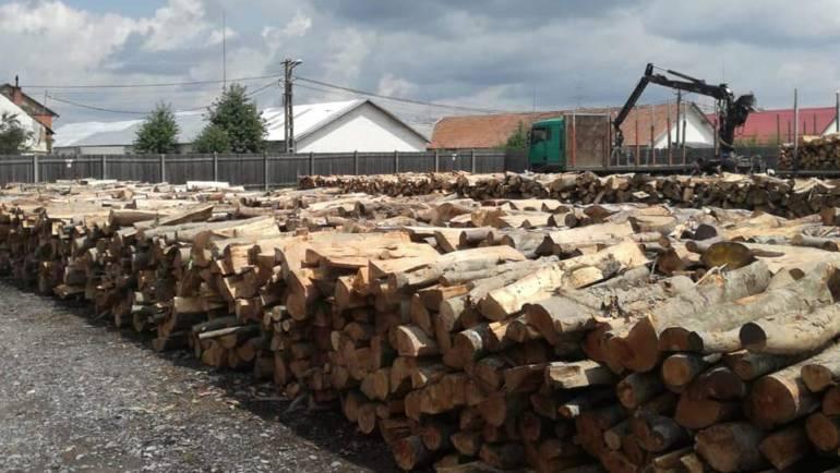 Primăria Municipiului Săcele continuă furnizarea lemnului de foc către populație